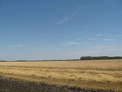Anninsky District httpsuploadwikimediaorgwikipediacommonsthu