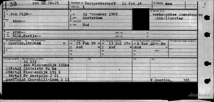 Ans van Dijk 14011948 Ans van Dijk MyHeritage Blog