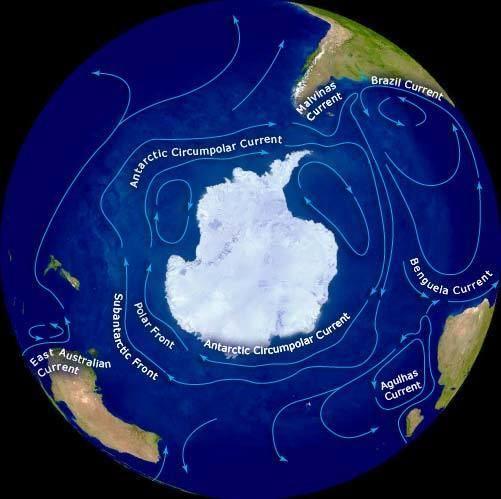 Antarctic Circumpolar Current wwwtearagovtnzfilesm5915enzjpg
