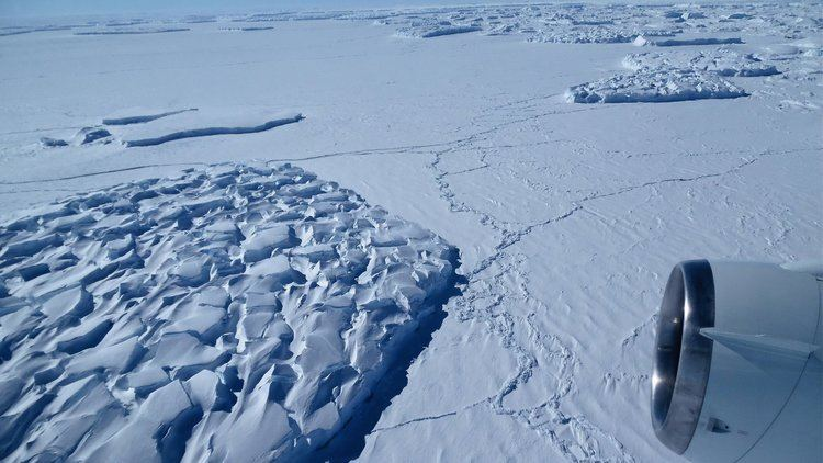 Antarctic ice sheet httpsstatic01nytcomimages20160331world0