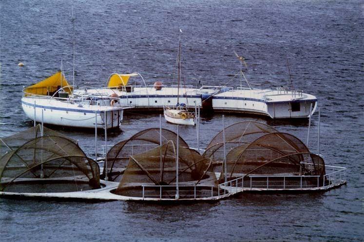 Antarctic Technology Offshore Lagoon Laboratory