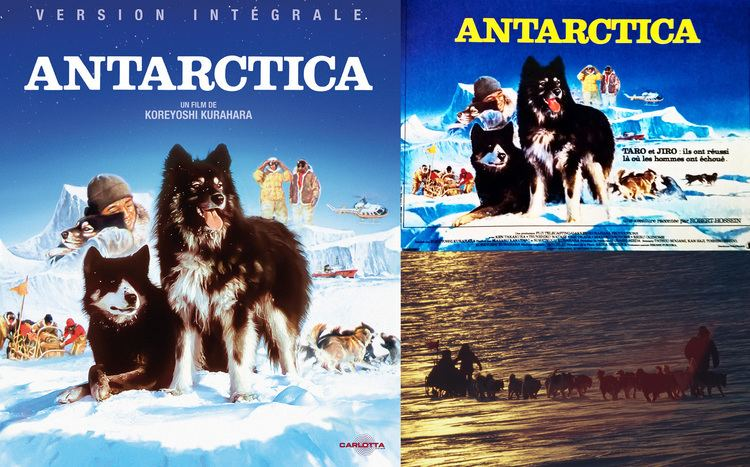 Antarctica (1983 film) Antarctica la critique du film test bluray