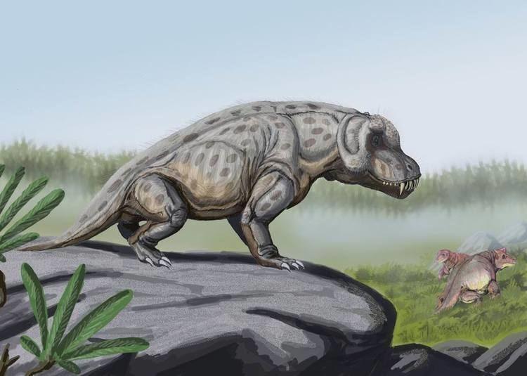 Anteosaur