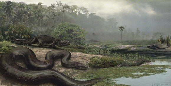 Anthracosuchus Pinterest The world39s catalog of ideas