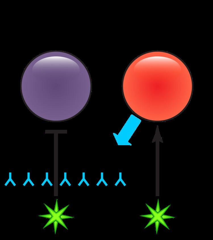 Antibody-dependent enhancement