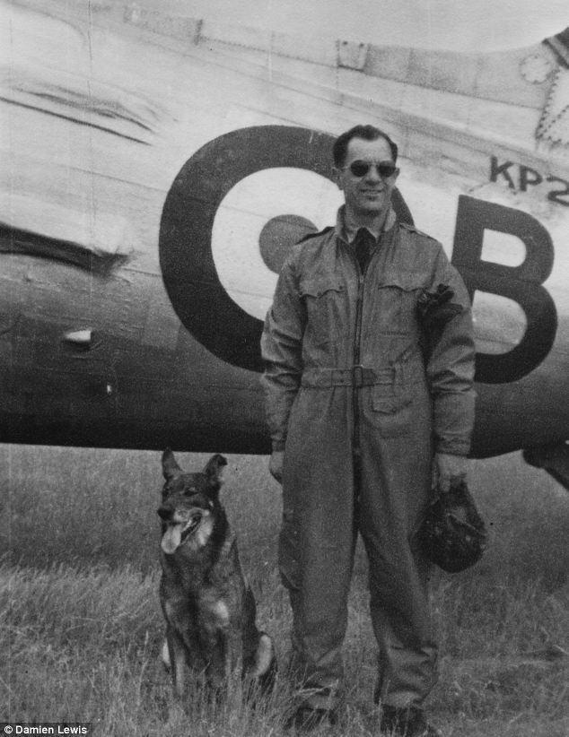 Antis (dog) Antis the German Shepherd Airman39s Best Friend