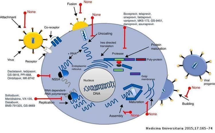 History and progress of antiviral drugs: From acyclovir to direct ...