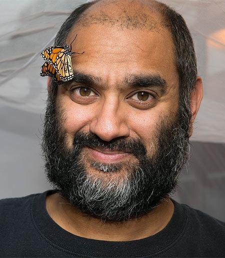 Anurag Agrawal Anurag Agrawal Ecology and Evolutionary Biology Cornell Arts