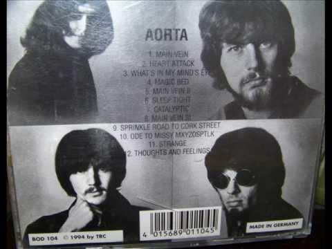 Aorta (band) httpsiytimgcomviPgRBah1Sa1Mhqdefaultjpg