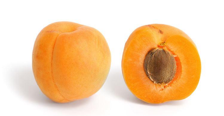 Apricot httpsuploadwikimediaorgwikipediacommons22