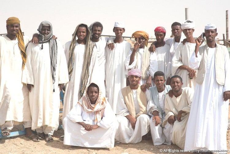 Arabs The Arabs