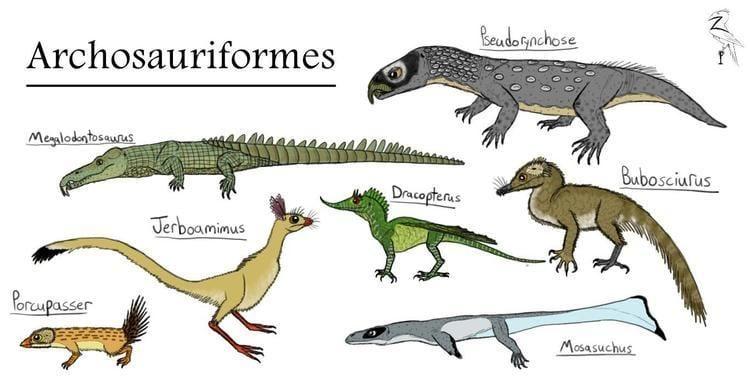 Archosaur archosaurs DeviantArt