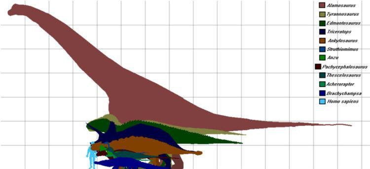 Archosaur Archosaur Animal and the Partner