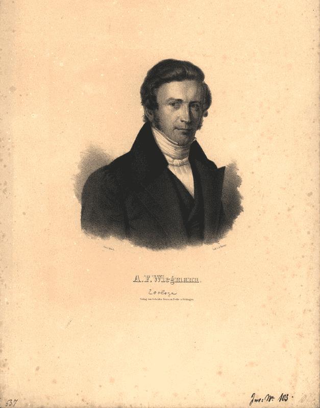 Arend Friedrich August Wiegmann Portrt Arend Friedrich August Wiegmann