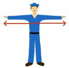 Arm span