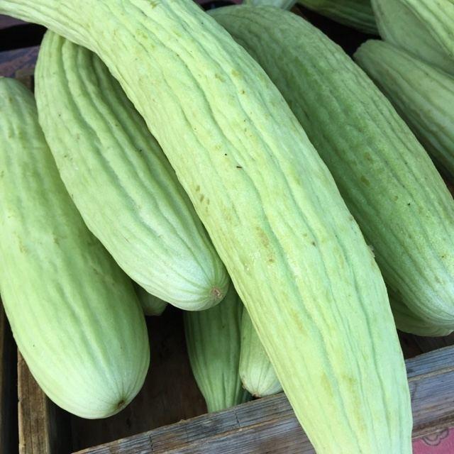 Armenian cucumber Armenian Cucumber Information Recipes and Facts