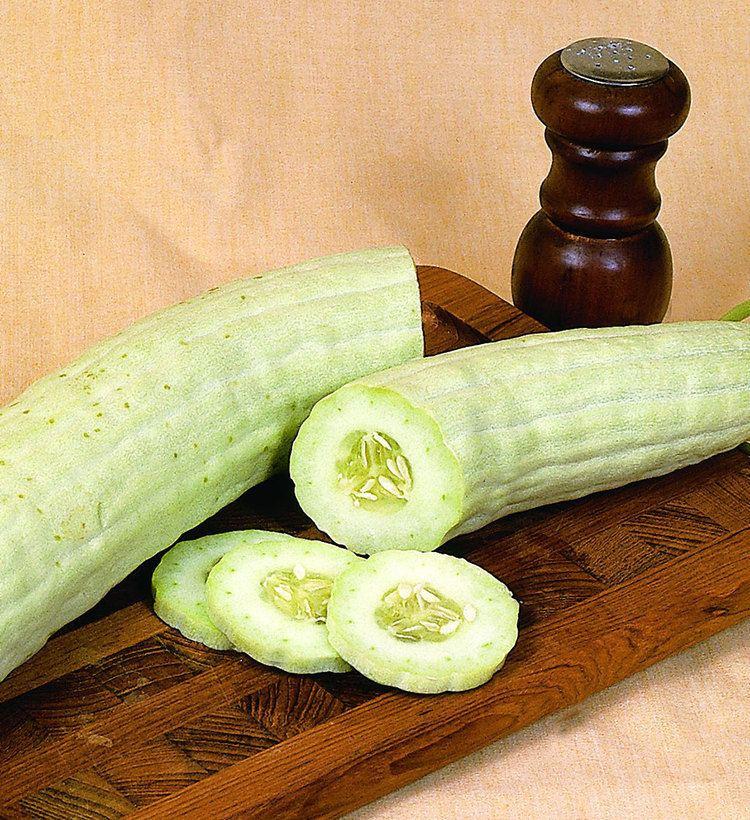 Armenian cucumber httpsbonnieplantscomwpcontentuploadsarmeni