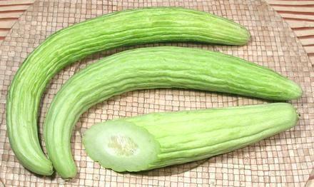 Armenian cucumber Armenian
