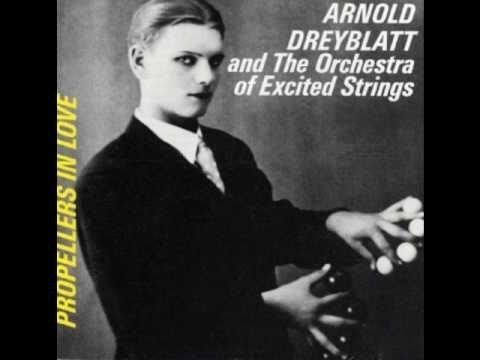 Arnold Dreyblatt ARNOLD DREYBLATT amp The Orchestra of Excited Strings