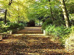 Arrowe Park httpsuploadwikimediaorgwikipediacommonsthu