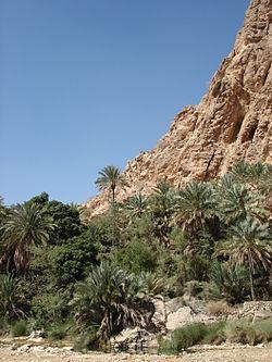 Ash Sharqiyah Region (Oman) httpsuploadwikimediaorgwikipediacommonsthu