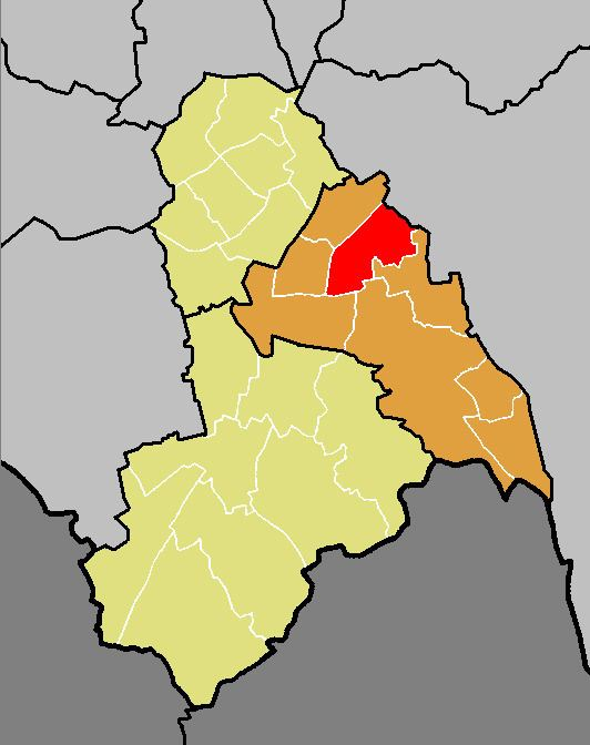 Ashburton (ward)