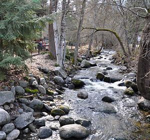 Ashland Creek httpsuploadwikimediaorgwikipediacommonsthu