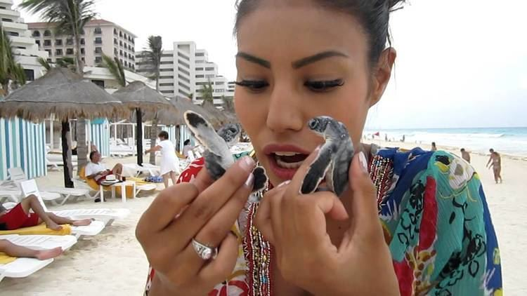 Ashley Callingbull-Burnham Canadian Mrs Universe Winner Urges First Nations Citizens To Vote