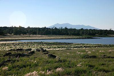 Ashurst Lake httpsuploadwikimediaorgwikipediacommonsthu