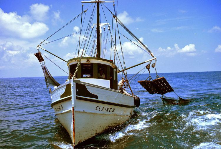Asia-Pacific Fishery Commission