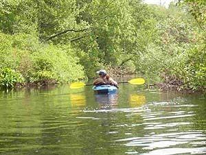 Assabet River httpspaddlingcomstorageimagestripreportsr