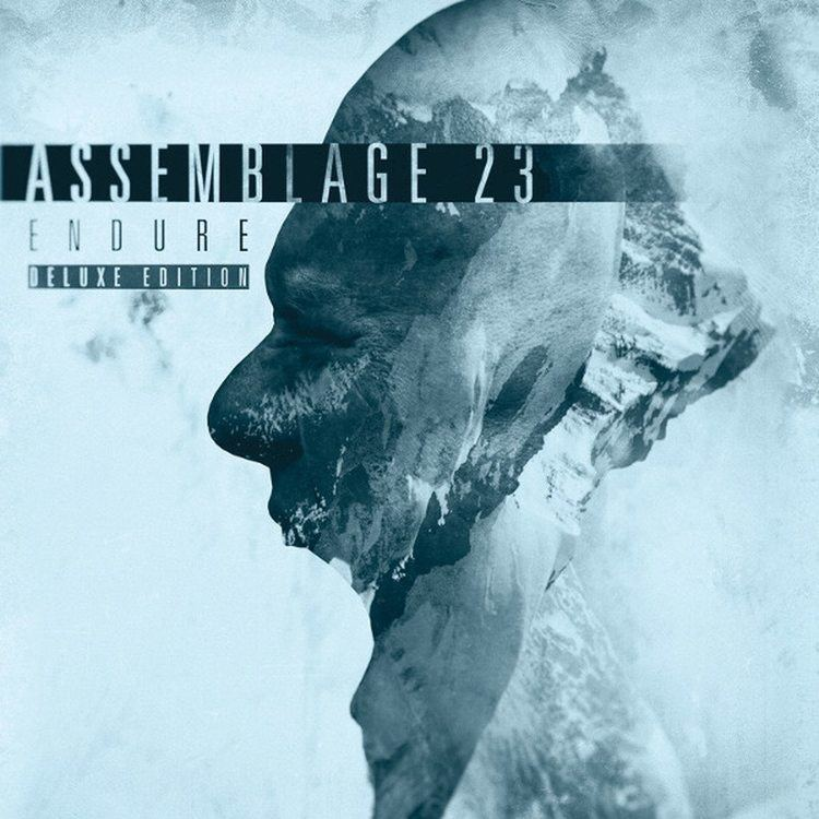 Assemblage 23 Assemblage 23 to prepare new 39Endure39 album as a deluxe 2CD set