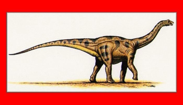 Atlantosaurus Atlantosaurus Pictures amp Facts The Dinosaur Database