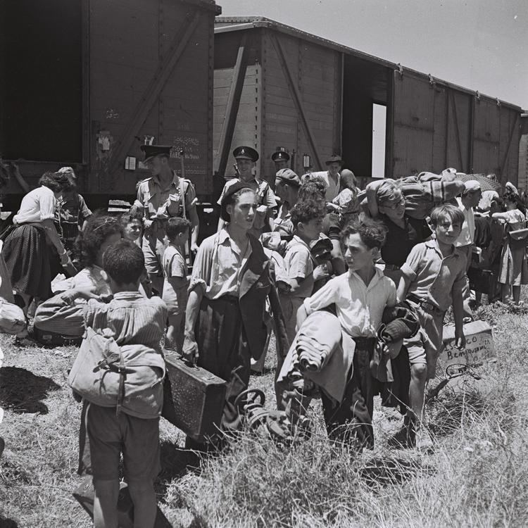 Atlit detainee camp uploadwikimediaorgwikipediacommons55aAtlit