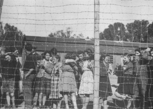 Atlit detainee camp Arrests amp Detentions