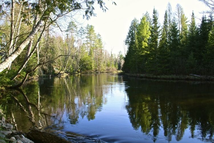 Au Sable River (Michigan) httpswwwoldausablecommediawysiwygRiverPics