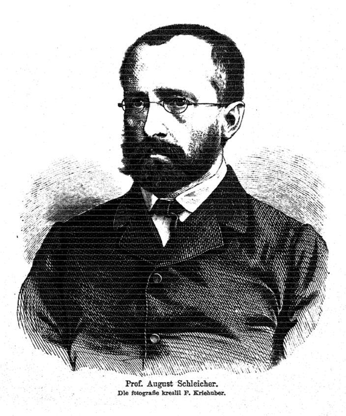 August Schleicher httpsuploadwikimediaorgwikipediacommons88
