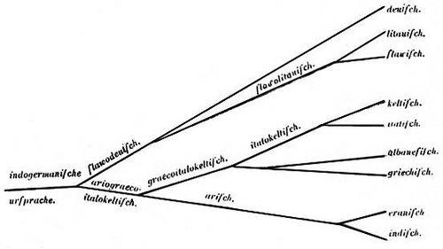 August Schleicher IndoEuropean Language tree Author August Schleicher 182 Flickr