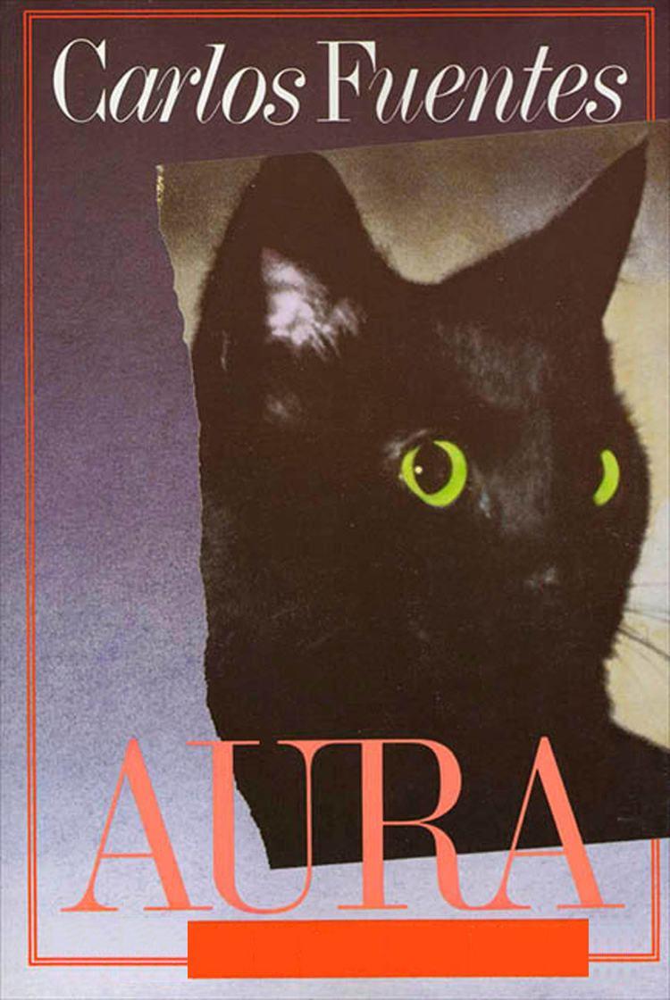 Aura (novel) t0gstaticcomimagesqtbnANd9GcRUjYgcDCnRaX3SKj