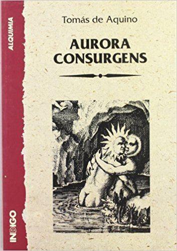 Aurora consurgens httpsimagesnasslimagesamazoncomimagesI5