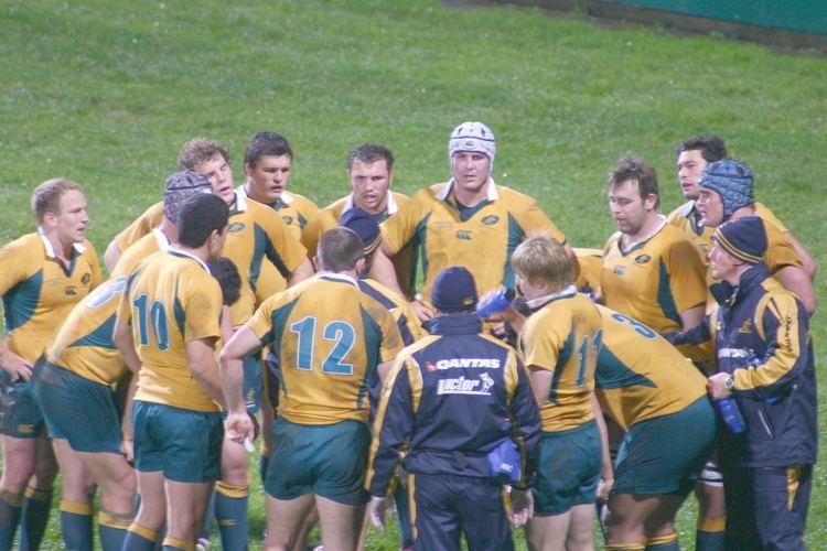 Australia national rugby union team Australia national rugby union team Wikipedia