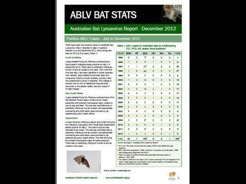 Australian bat lyssavirus wwwtropicalhealthsolutionscomsitesdefaultfile