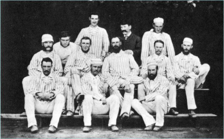 Australian cricket team in England and North America in 1878