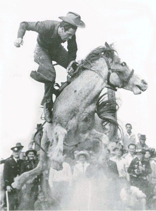 Australian rodeo