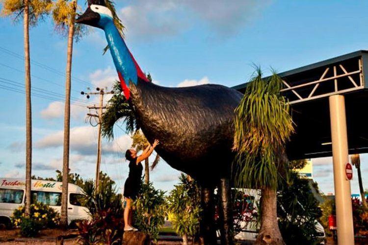 Australia's big things Photo Essay Australia39s Big Things