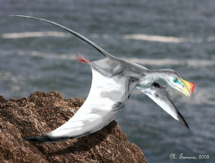 Austriadactylus imagesdinosaurpicturesorgAustriadactylusbyNTa