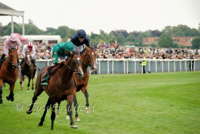 Authorized (horse) Paris Parfait Dettori rides Authorized to triumph at York