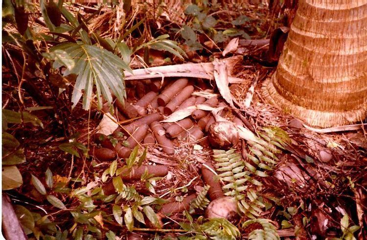 Autonomous Region of Bougainville in the past, History of Autonomous Region of Bougainville