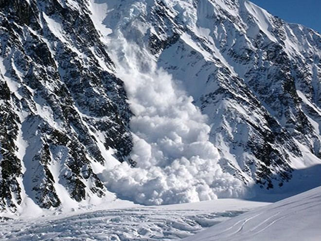 Avalanche Avalanche Resources Categories