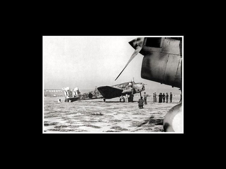 Aviazione Legionaria Breast Shield AVIAZIONE LEGIONARIA CRUPPO CICOGNE khakidepotcom